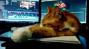 The Cat Stays In The Picture [online editing in the studio]